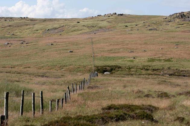 Remains found on Saddleworth Moor