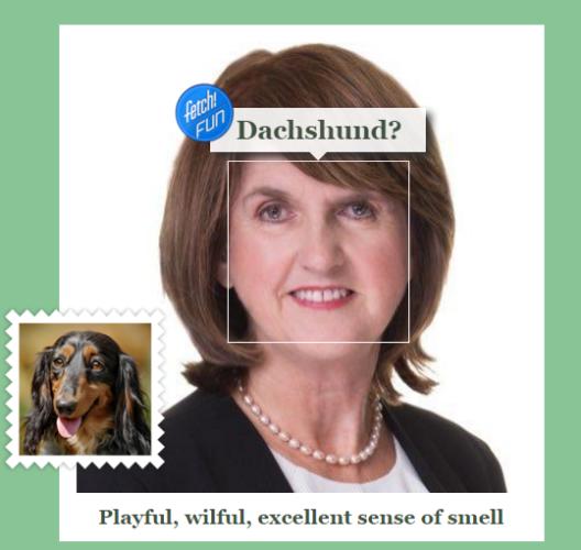joanburtondog