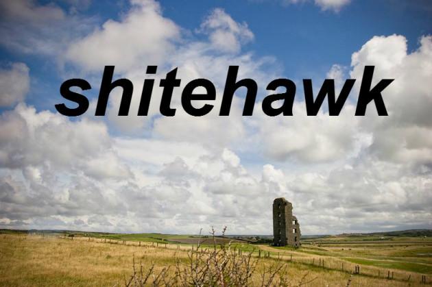 shitehawk