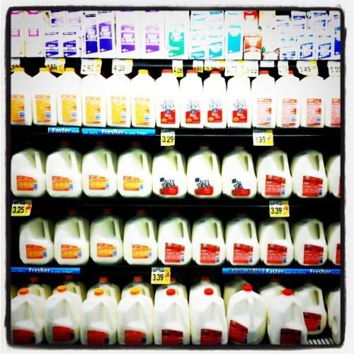 #milk #dairy #foodporn #supermarketporn #grocerystore #dairyaisle #florescent #lactoseintolerance