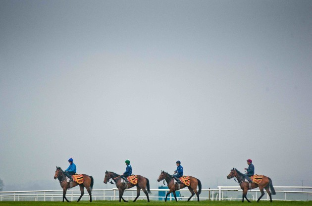 Kevin Prendergast's string gallop on the Curragh