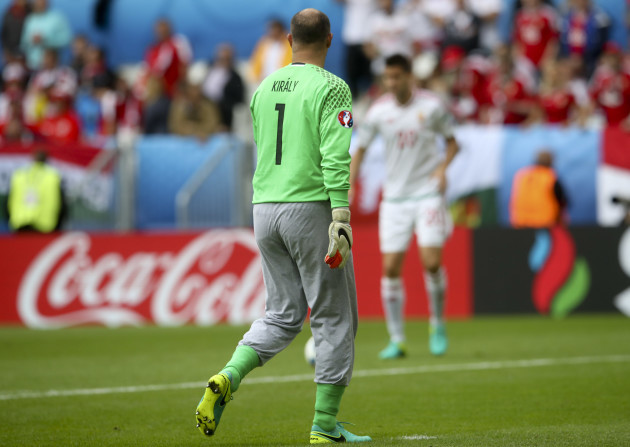 Soccer Euro 2016 Austria Hungary
