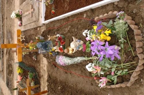 Rachel O'Reilly investigation - Balgriffin cemetery
