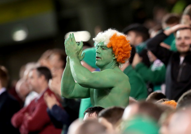 An Ireland fan