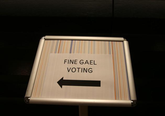 Voting - Fine Gael Leader.