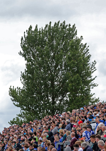 A view of spectators