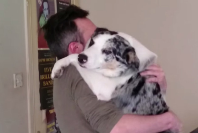 passportdog