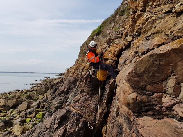 Coast guard rescue dog trapped 15ft down a cliff on Dublin beach