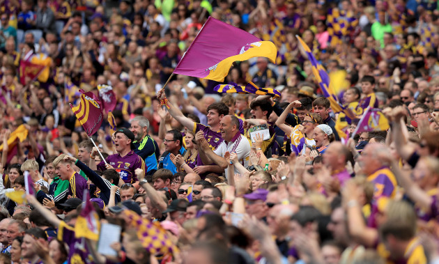Wexford supporters