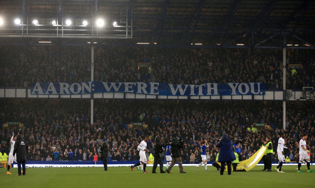 Everton v Watford - Premier League - Goodison Park