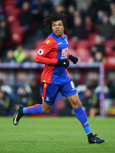 Crystal Palace v Manchester City - Emirates FA Cup - Fourth Round - Selhurst Park