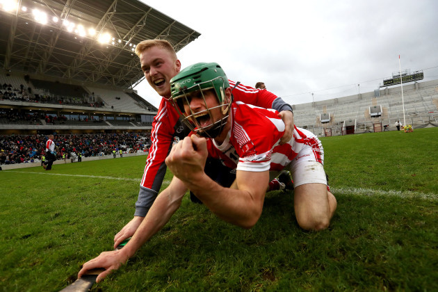 Seamie Harnedy celebrates after the game