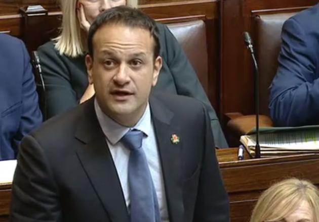 Clarecastle Historian Dubs Taoiseach's Shamrock Poppy A Powerful Gesture