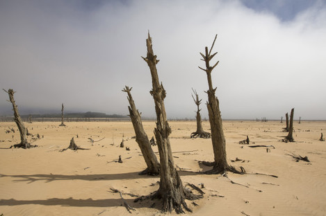 Dryness in Cape Town