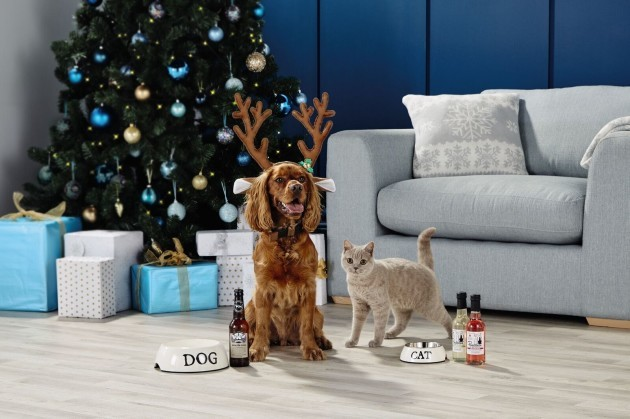 Aldi Is Selling Bottles Of 'Pawsecco' For Your Dog This Christmas