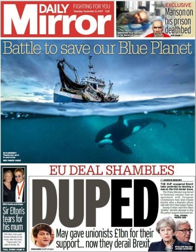 duped daily mirror