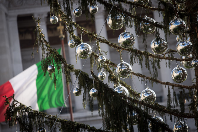 Italy: The Christmas tree of Rome Renamed 'Spelacchio'