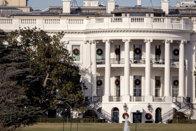 White House Magnolia Tree