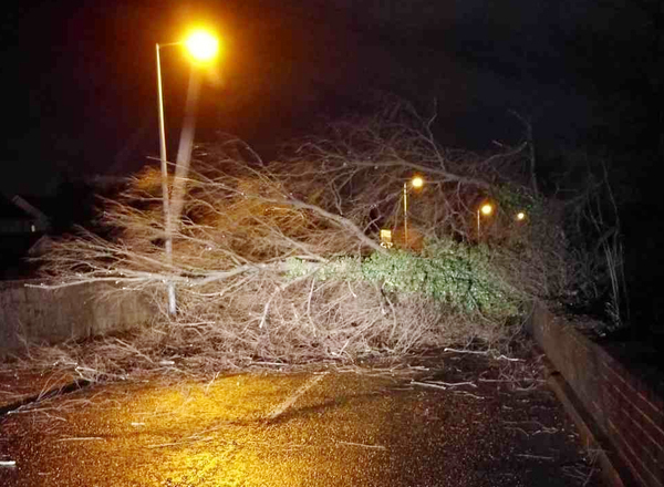 Storm Eleanor damage