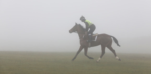 FOG ON THE CURRAGH II2A1904_90533879