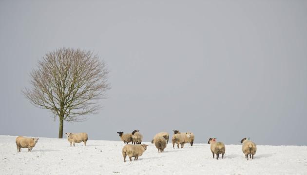 Winter weather Dec 8th 2017