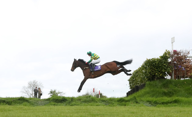Punchestown Festival - Day Three - Ladbrokes Champion Stayers Hurdle Day