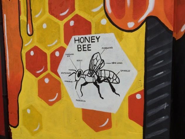 honey-bee-k-fest