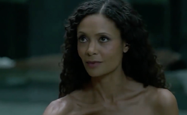 Westworld's Thandie Newton to Get Equal Pay for Season 3