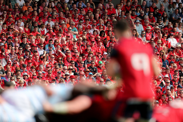 Munster fans look on