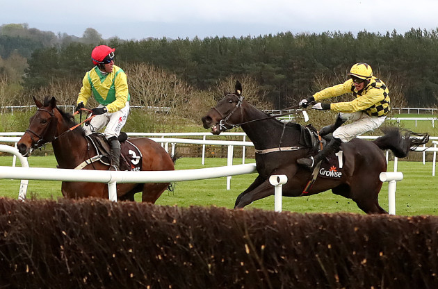 Panicked Townend apologises for 'genuine mistake' in freakish Punchestown finish