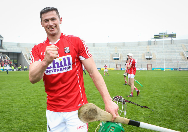 Seamus Harnedy celebrates after the game