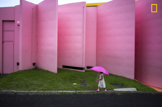The pink color world