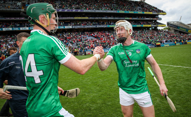 William O'Donoghue and Cian Lynch celebrate