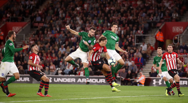 Southampton v Brighton and Hove Albion - Premier League - St Mary's