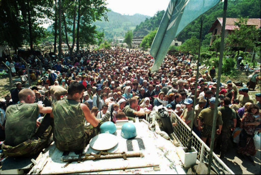 Im writing a essay on the bosnia war and need information?