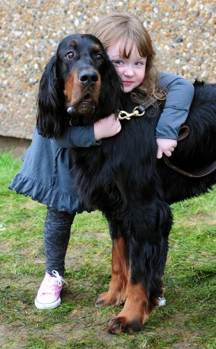 Pictures Of Humans Hugging Animals That Will Make You Feel Better - 25 heartwarming moments animals hugging