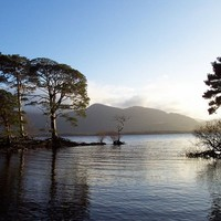 Young man drowns while swimming with a friend in Killarney