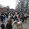 Man arrested in Galway over Smithfield horse fair chaos