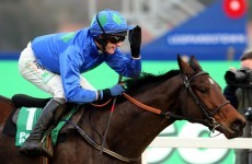 Champion Hurdle Preview: who will step into Binocular's shoes?