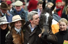 Irish racing's finest hour: Cheltenham, 2006