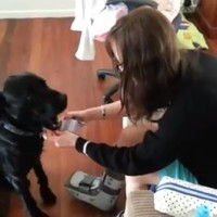Man proposes to girlfriend with help from his dog