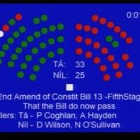 Seanad votes to hold referendum on abolishing the Seanad