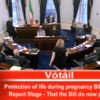Over to you Mr President: Seanad passes abortion bill