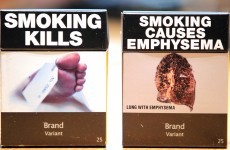 Poll: Should the Irish government ban smoking?