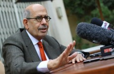 Egyptian opposition leader ElBaradei prepared to contest presidential election