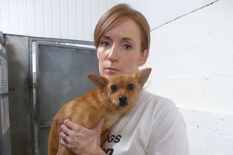 A Dog's Life volunteer Beth Hewson with stray dog Inga at Dunboyne Pound