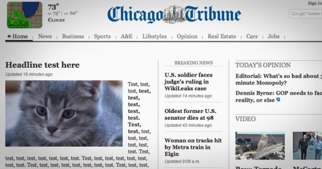 Chicago Tribune's perfect response after they put a kitten on their homepage