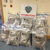 Cannabis worth €1.2million seized at Rosslare Europort