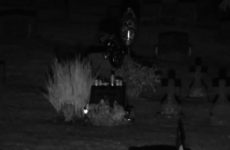 How do you feel about graveside webcams?