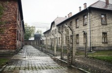 Most-wanted Nazi war crimes suspect dies